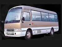Patente D1 minibus miniscuolabus fino a 16 persone Quiz patente D1